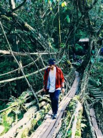 Double decker root bridge, Meghalaya